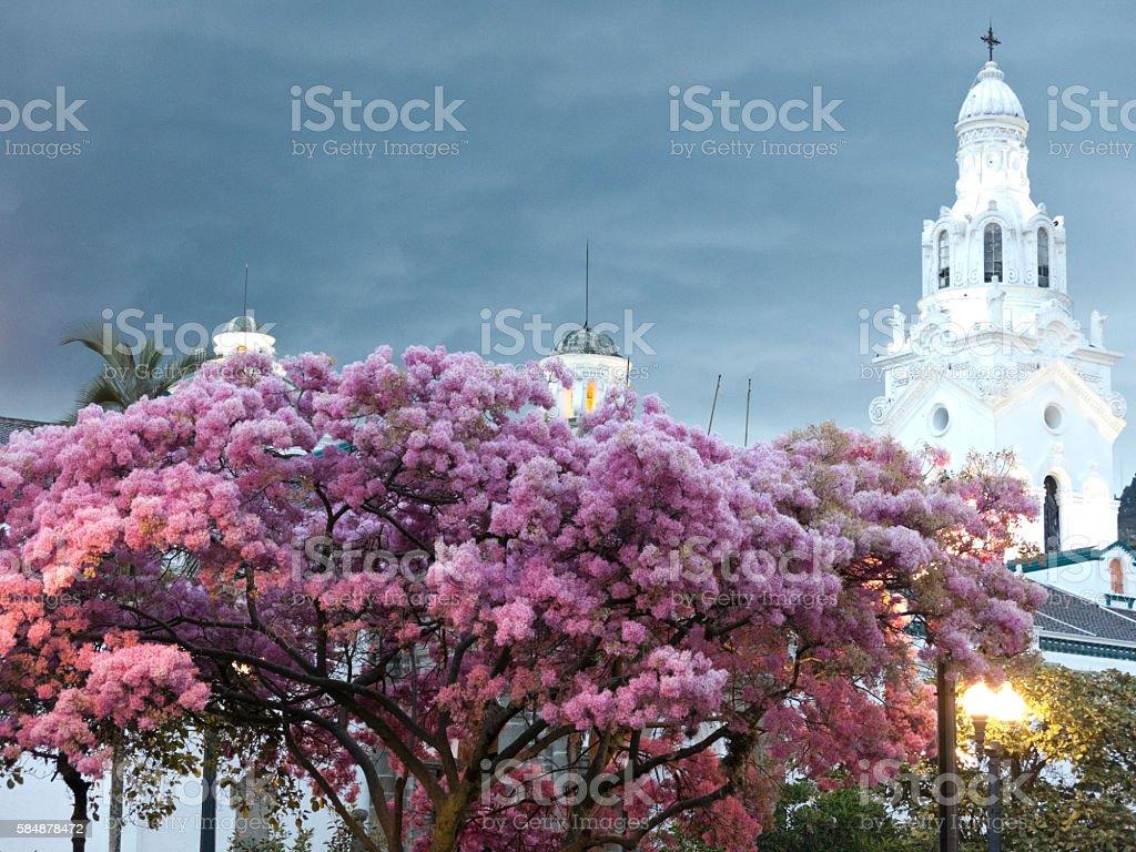 Campanario de La Catedral de Quito stock photo