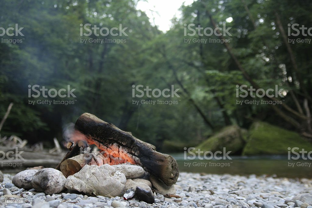 Campfire in the nature stock photo