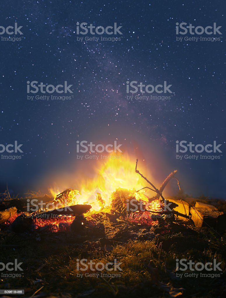 Campfire in the night stock photo