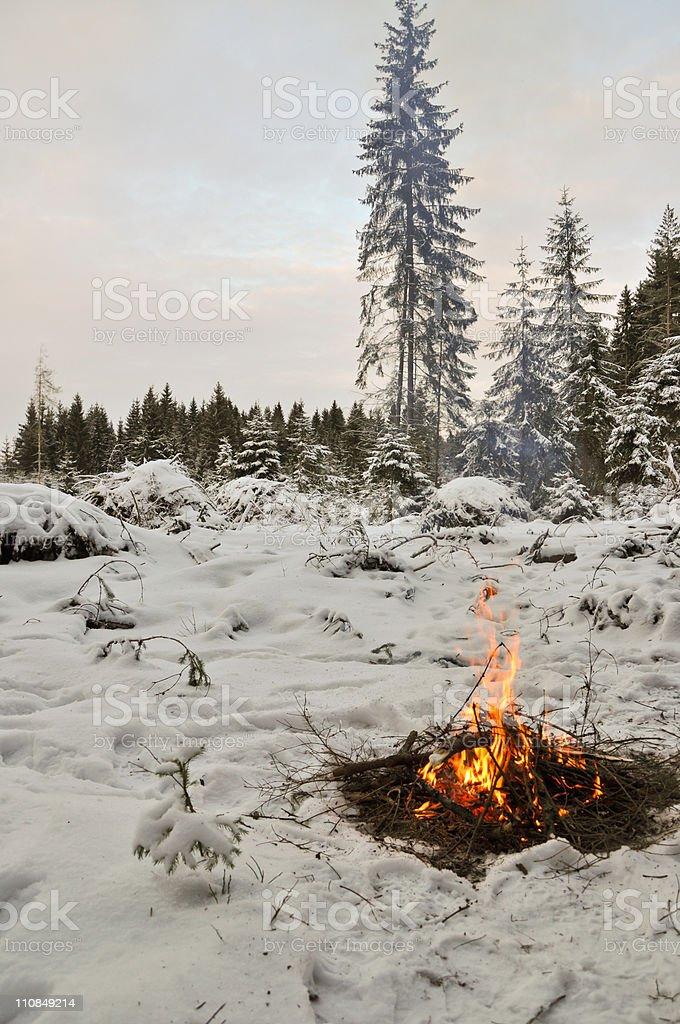 Lagerfeuer im winter forest Lizenzfreies stock-foto