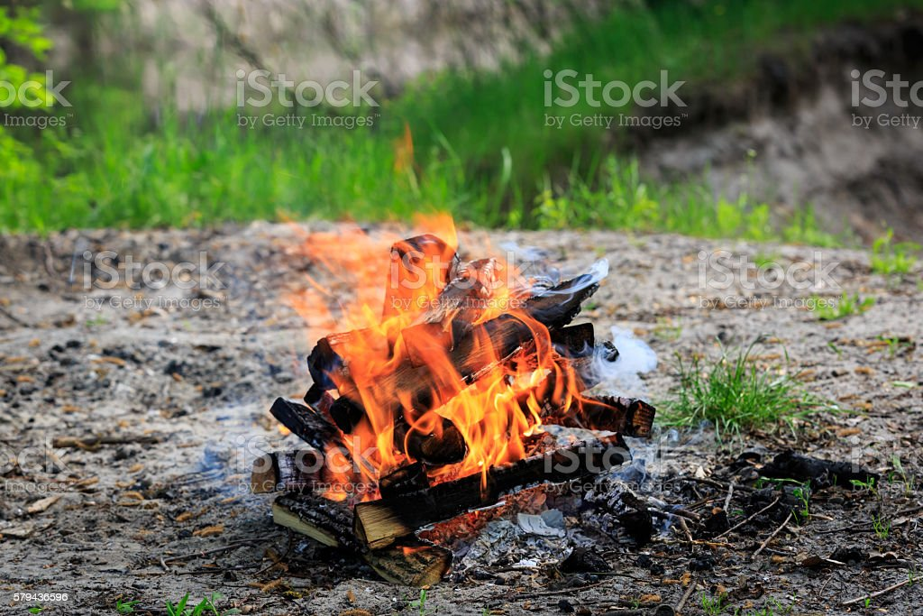 campfire on meadow in green forest stock photo