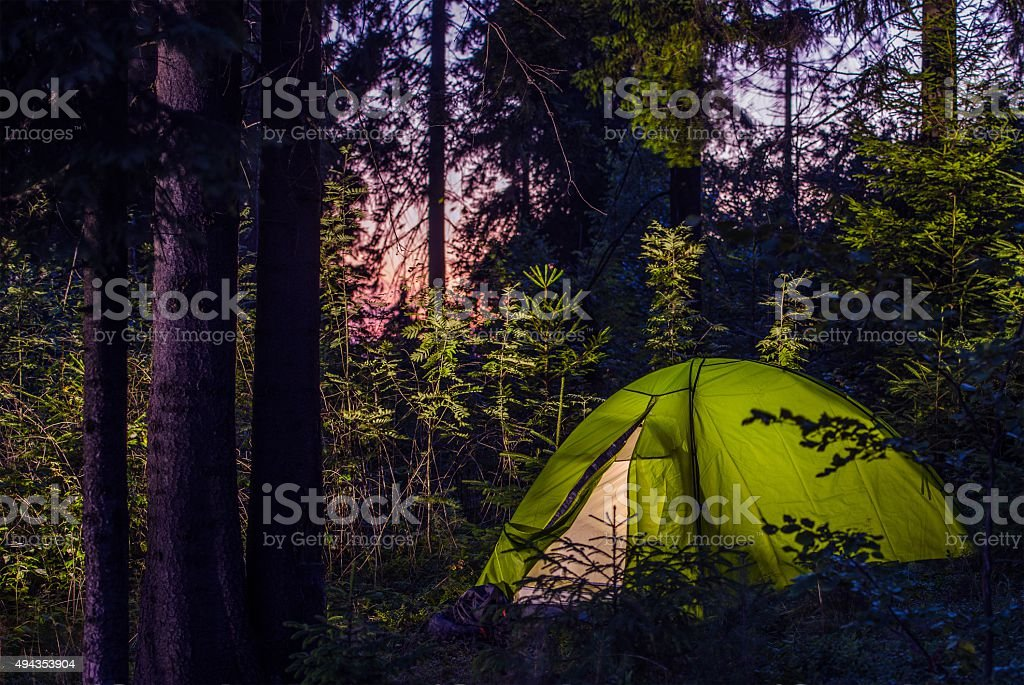 Camping in a Forest stock photo
