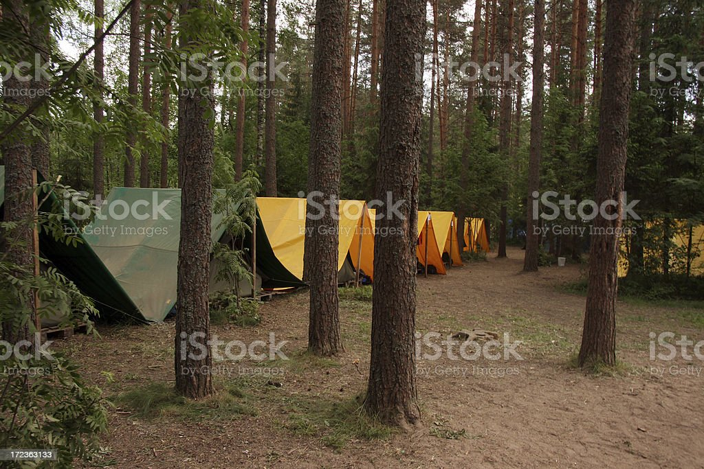 Camping in a wood royalty-free stock photo
