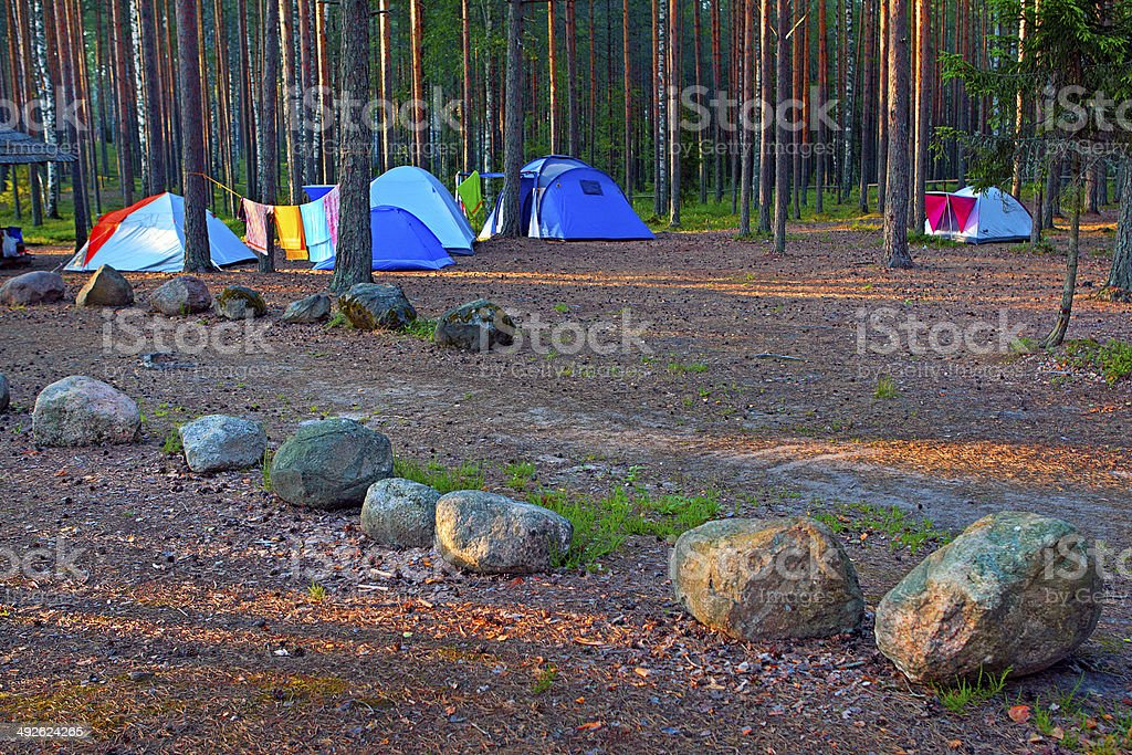 Camping in forest. stock photo
