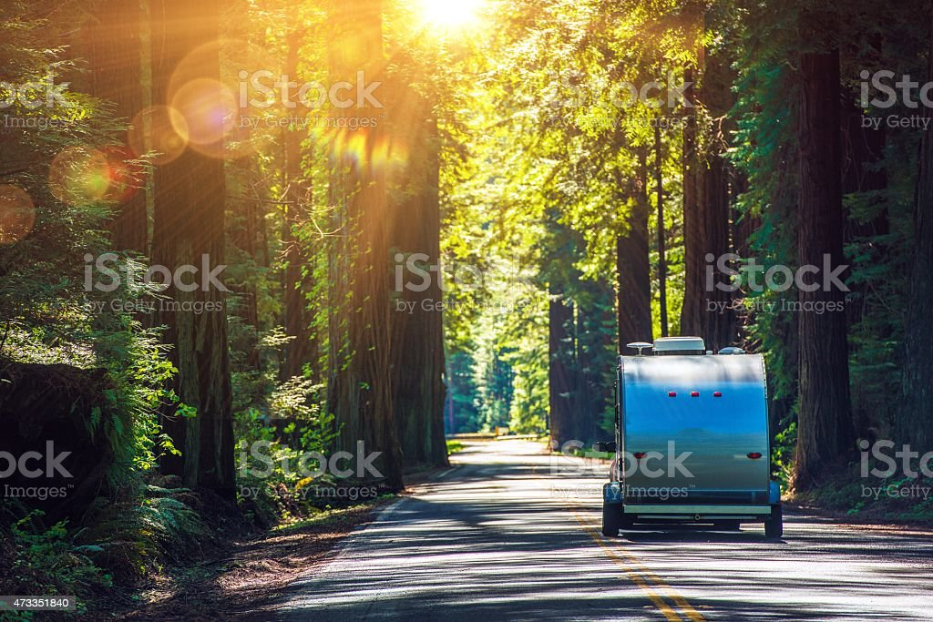 Camping in Redwoods stock photo