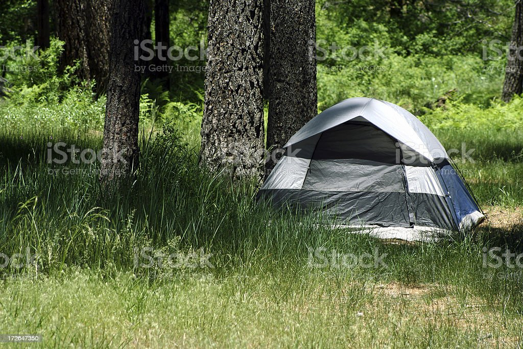 Camping in the Forest royalty-free stock photo