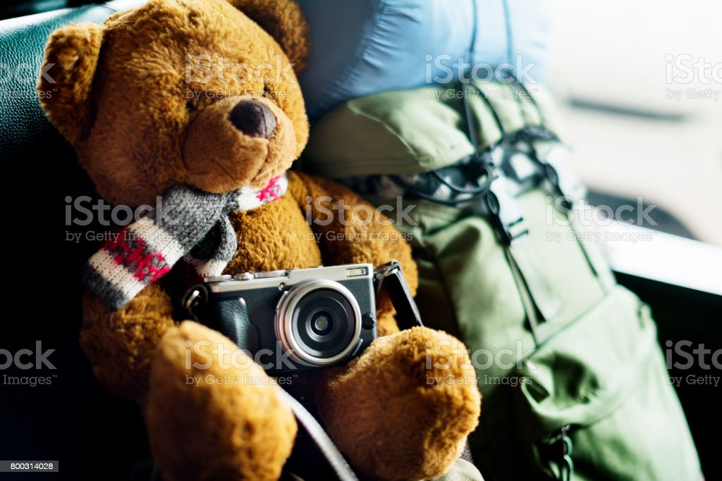 Camping Teddy Bear Travel Roadtrip Concept stock photo
