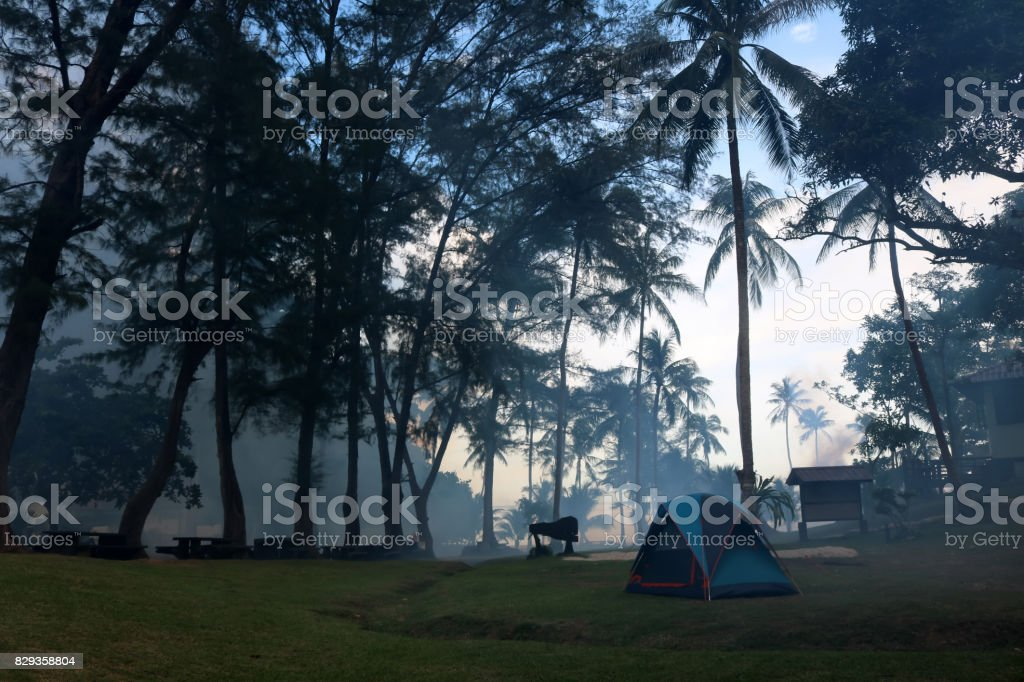Camping with morning fog and misty on coconut Beach stock photo