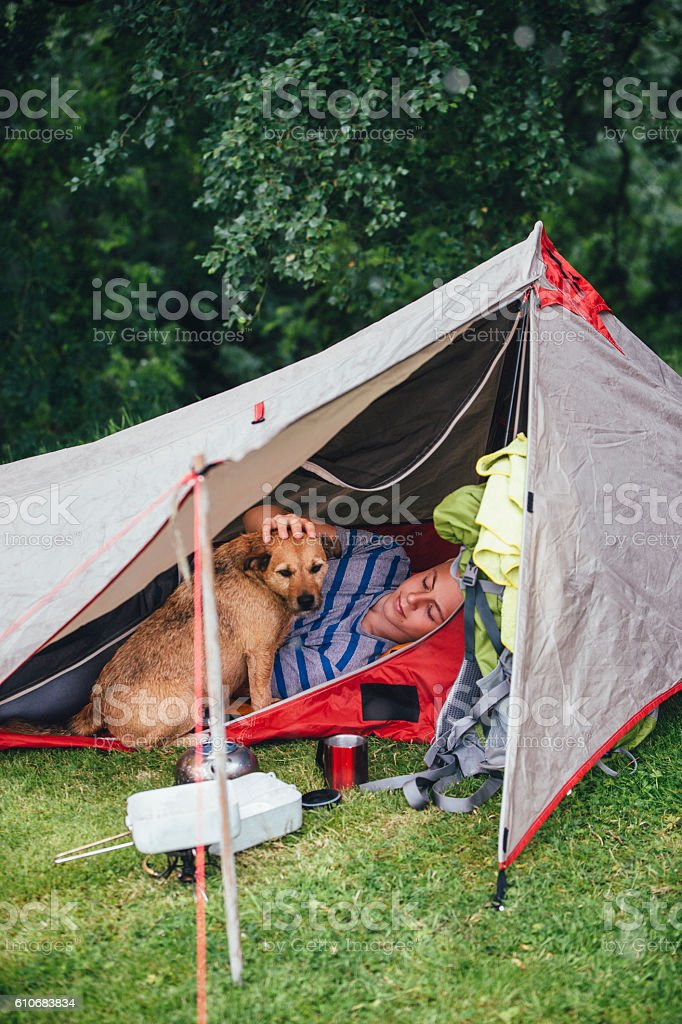 Camping with my Dog stock photo