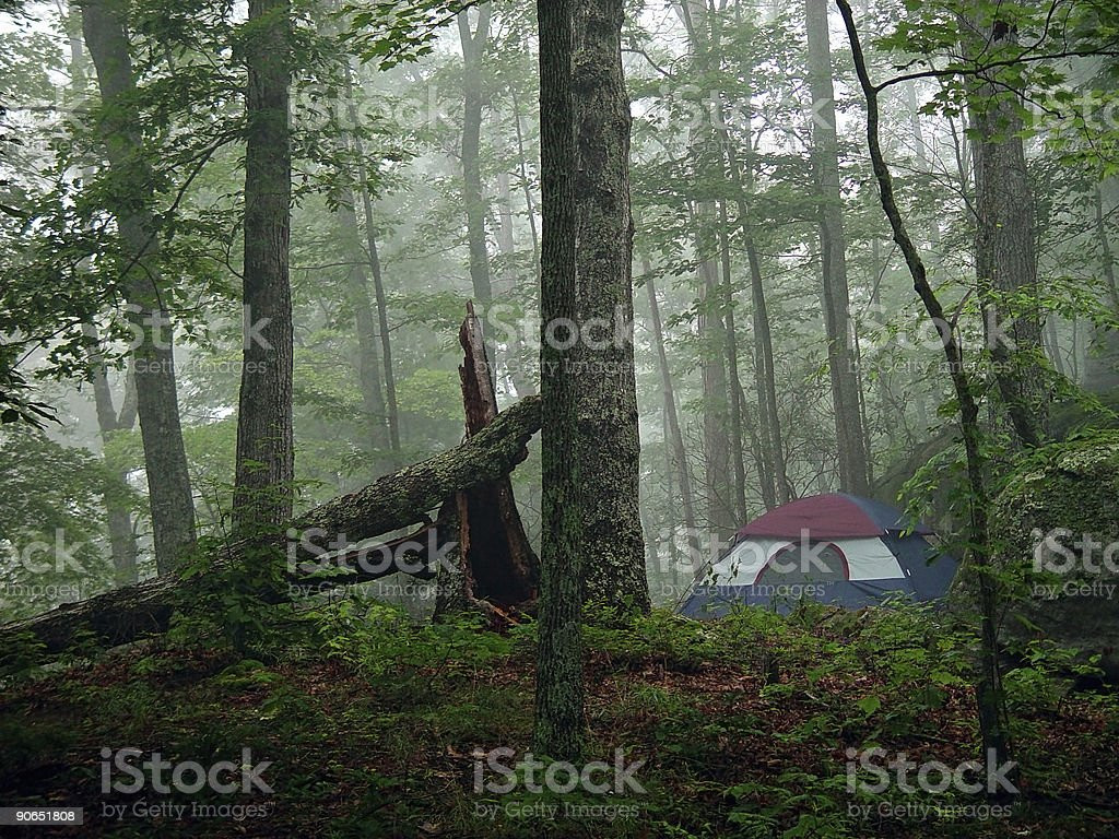 Campsite at Dawn royalty-free stock photo