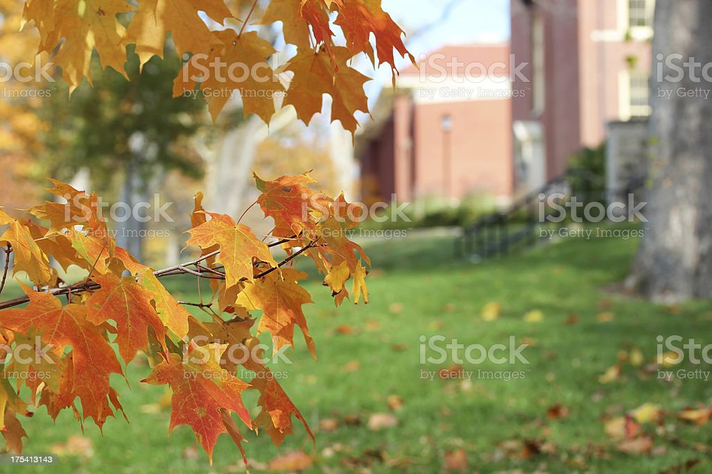 Campus in Autumn stock photo
