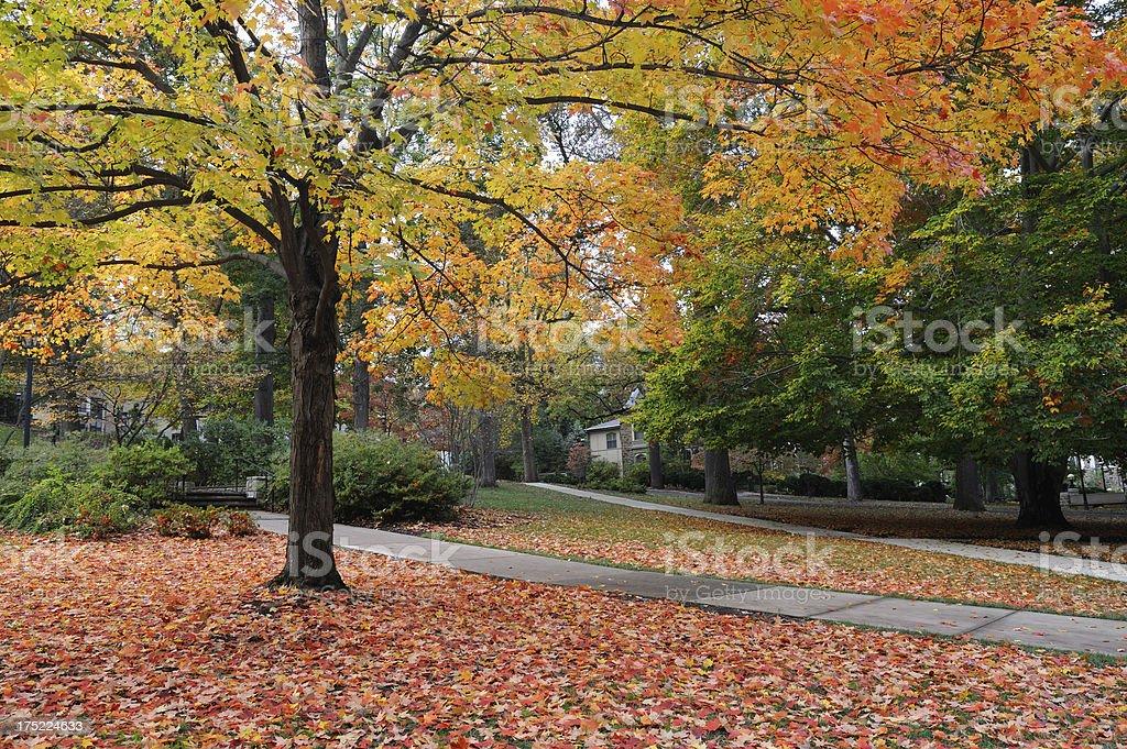 Campus of Lehigh University stock photo