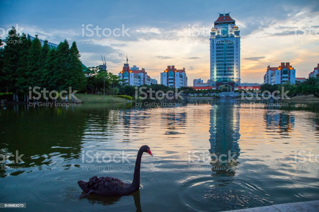 campus of xiamen university in China stock photo