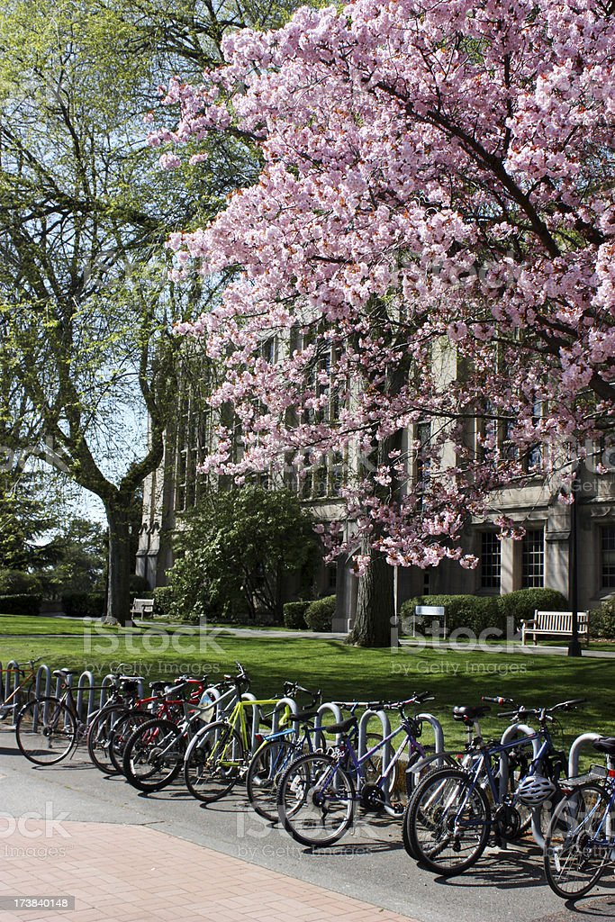 Campus Spring royalty-free stock photo