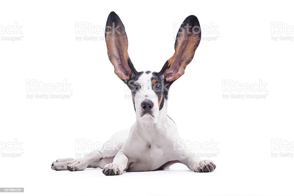 I can hear you stock photo
