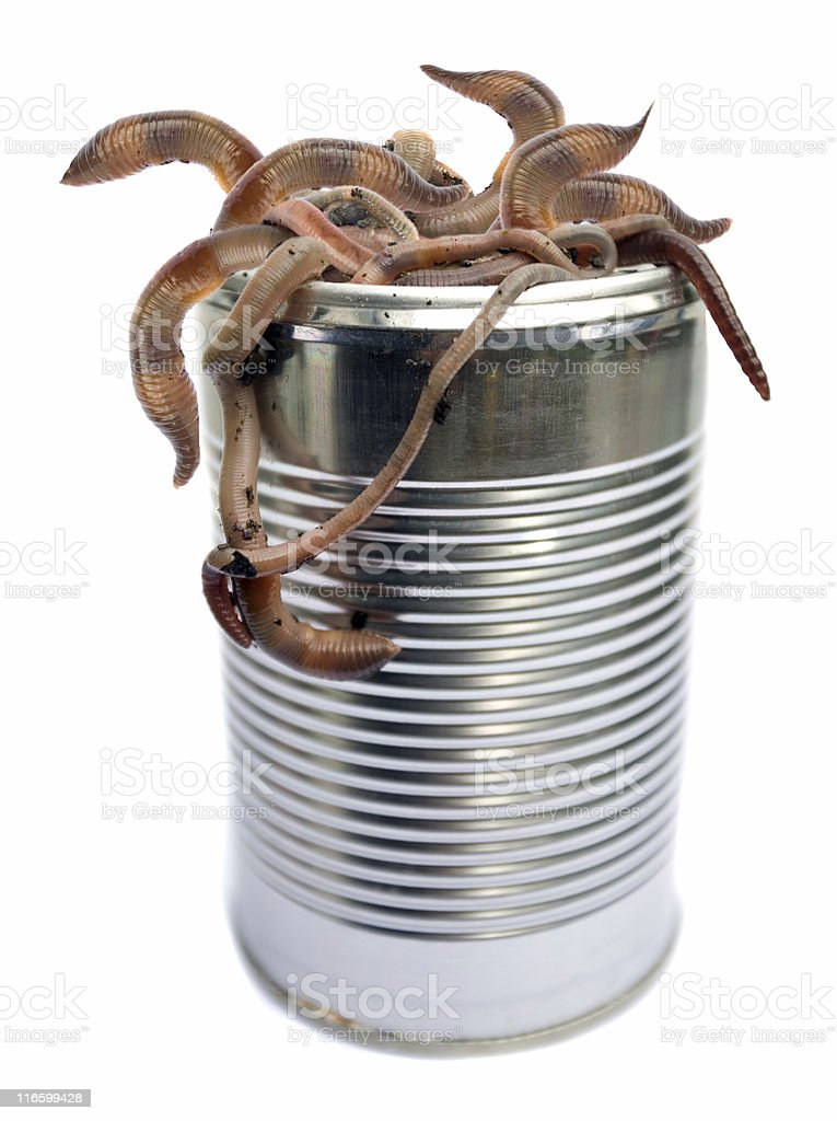 Can Of Worms stock photo