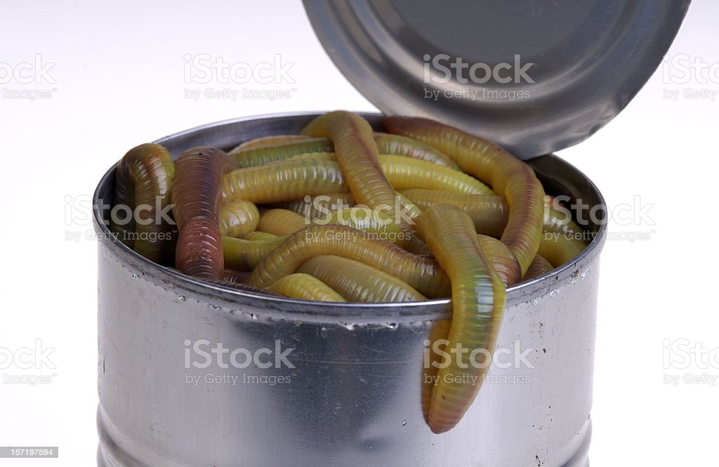 Can of Worms Up Close stock photo