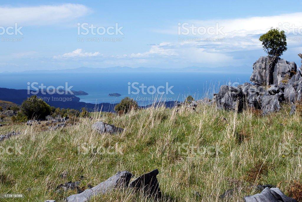 Canaan, Takaka Hill, New Zealand royalty-free stock photo