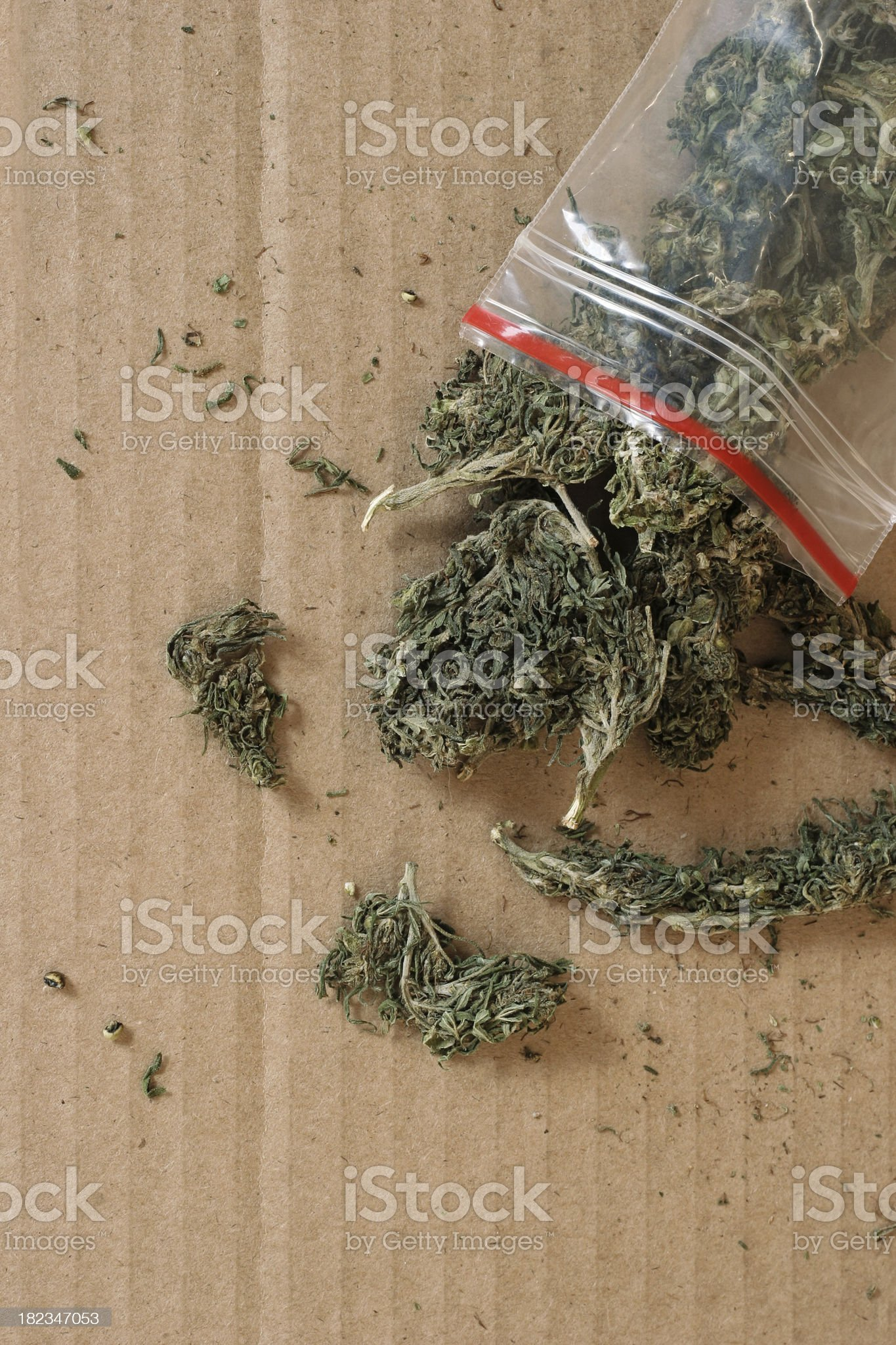 canabis buds from a plastic bank bag on cardboard royalty-free stock photo