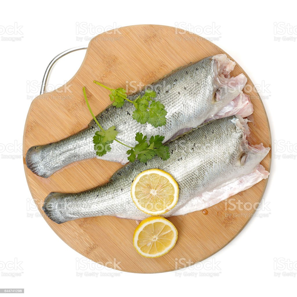 Canada Striped bass whole fresh fish, stock photo