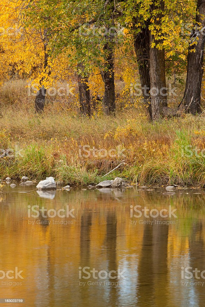 Canada's Fish Creek Provincial Park in Fall royalty-free stock photo