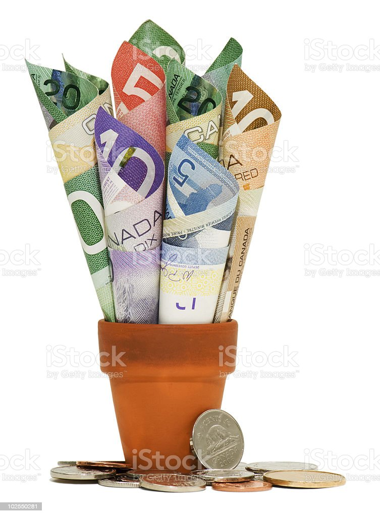 Canadian cash and coins stock photo