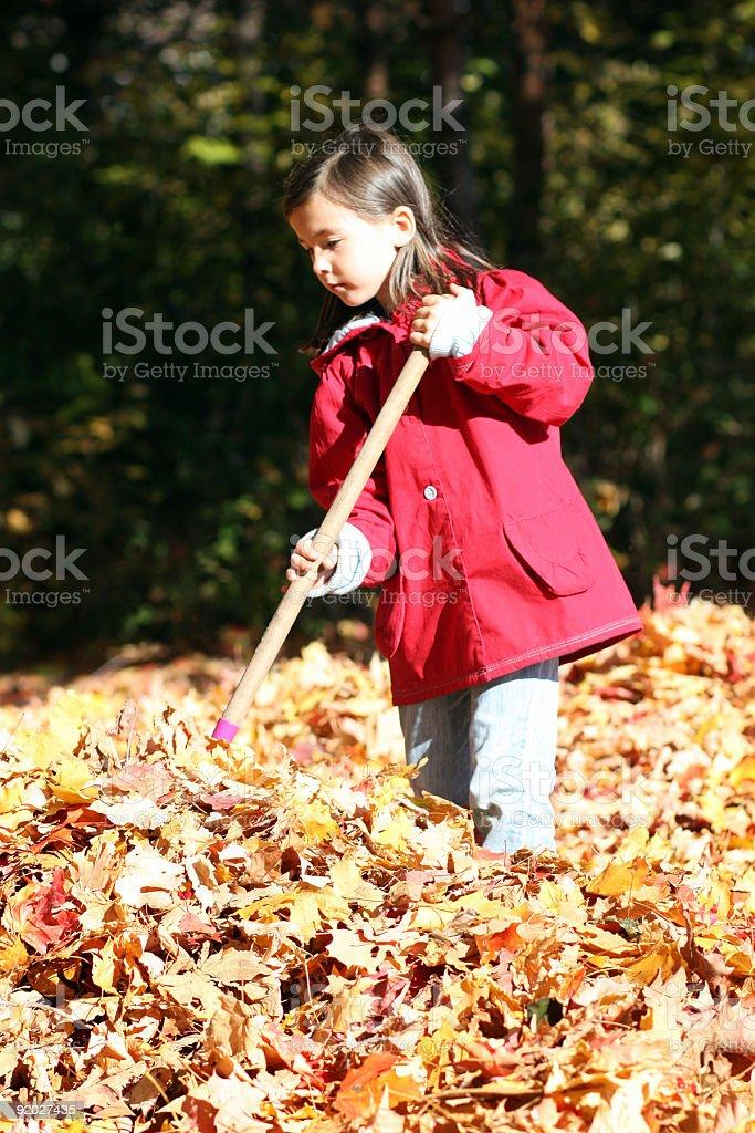 Canadian fall royalty-free stock photo