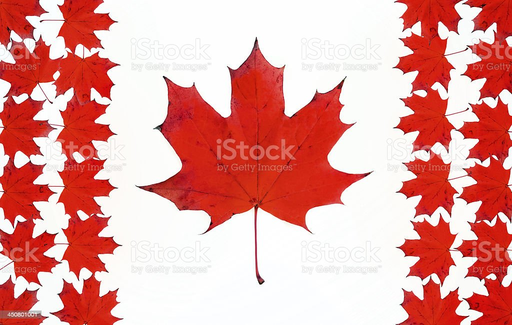 Canadian flag made from maple red leaves stock photo