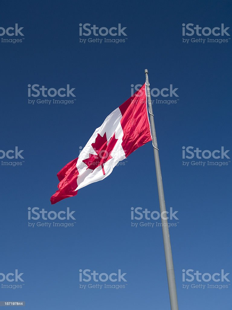 Canadian Flag (Portrait) royalty-free stock photo