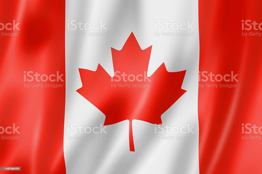 Canadian flag waving with shadows  vector art illustration