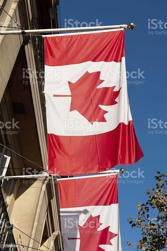 Canadian Flags royalty-free stock photo