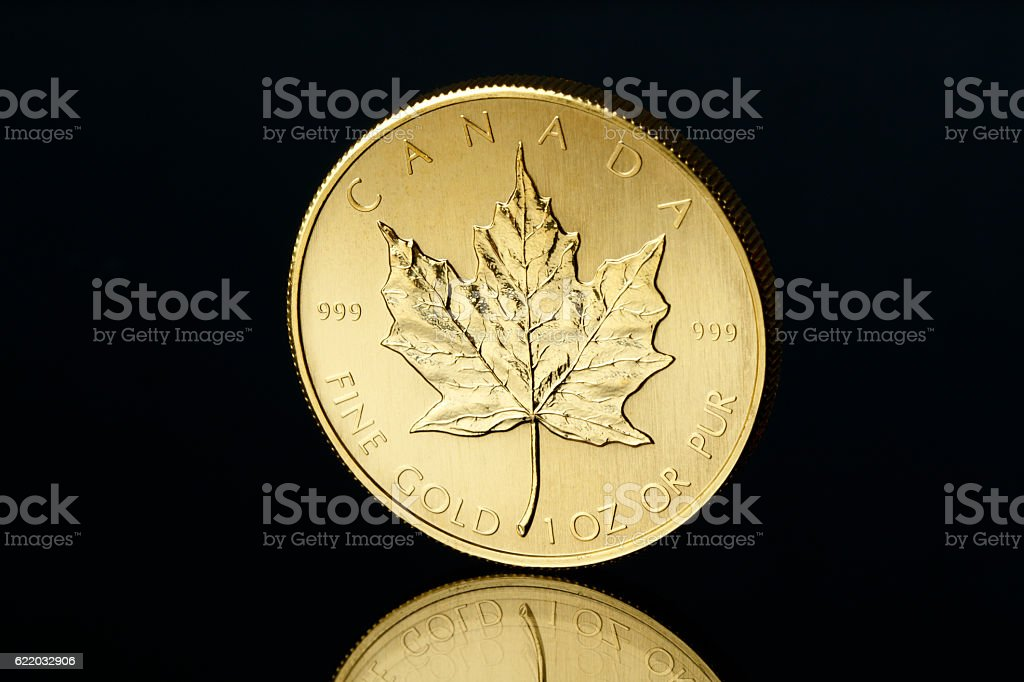 Canadian Gold Maple Leaf stock photo