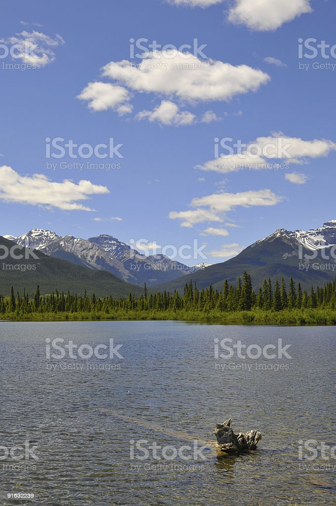 Canadian Lake in summer royalty-free stock photo