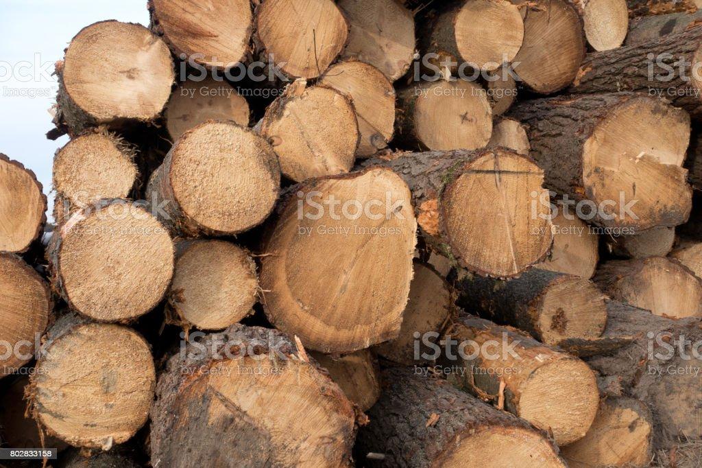 Canadian Log Background stock photo