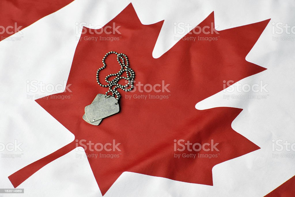 Canadian Military royalty-free stock photo