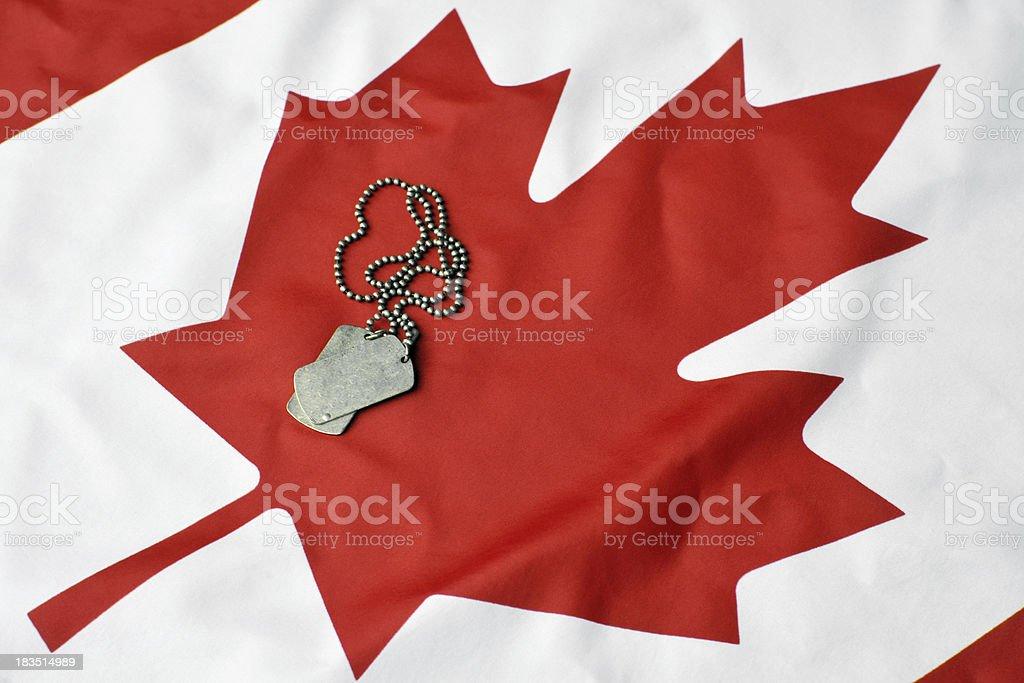 Canadian Military stock photo