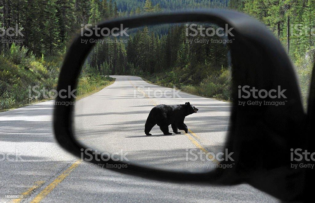 Canadian mirror stock photo