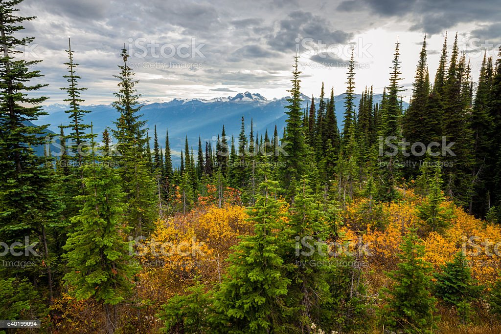 Canadian Mountains Landscape stock photo
