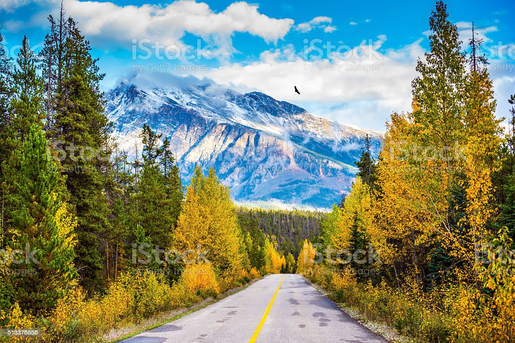 Canadian Rockies in beautiful September day stock photo