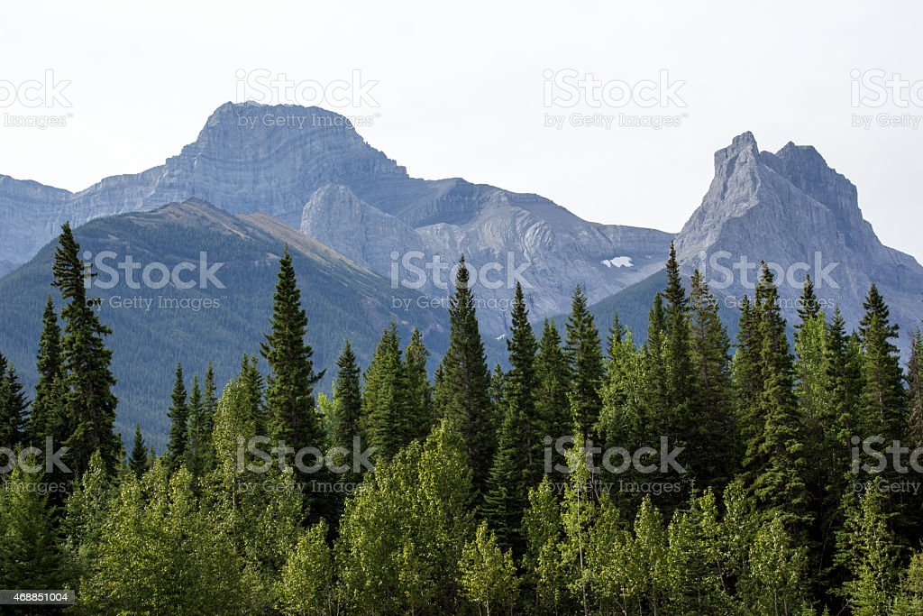 Canadian Rockies royalty-free stock photo