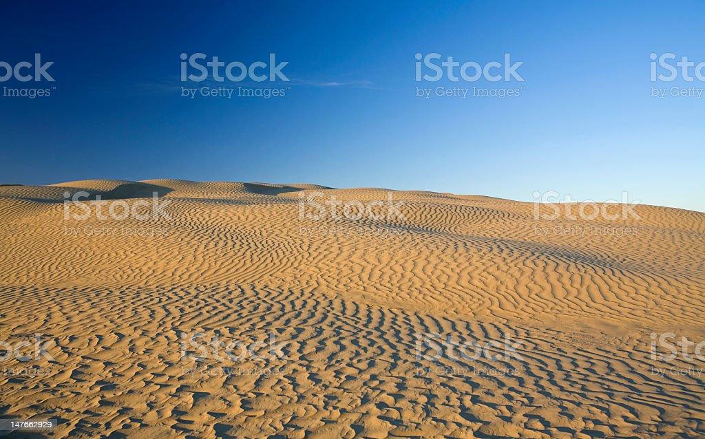Canadian sand dunes stock photo