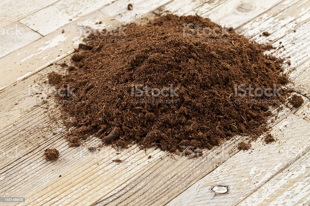 Canadian sphagnum peat moss stock photo