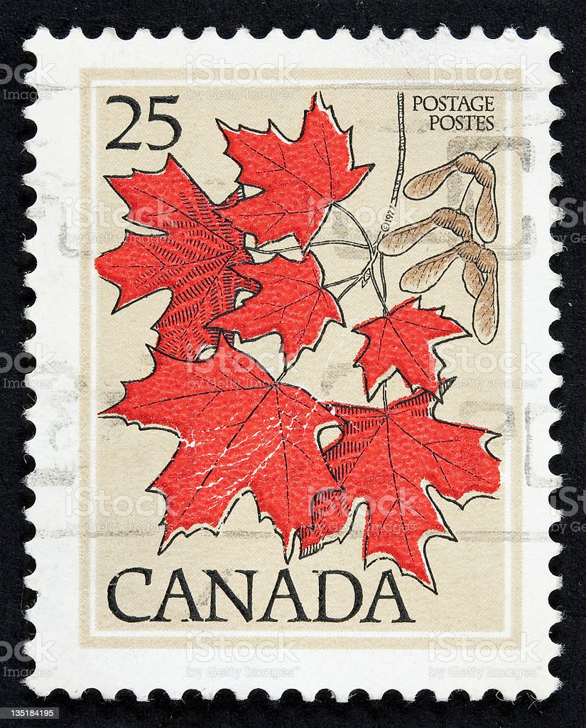 A Canadian stamp with red maple leaves stock photo