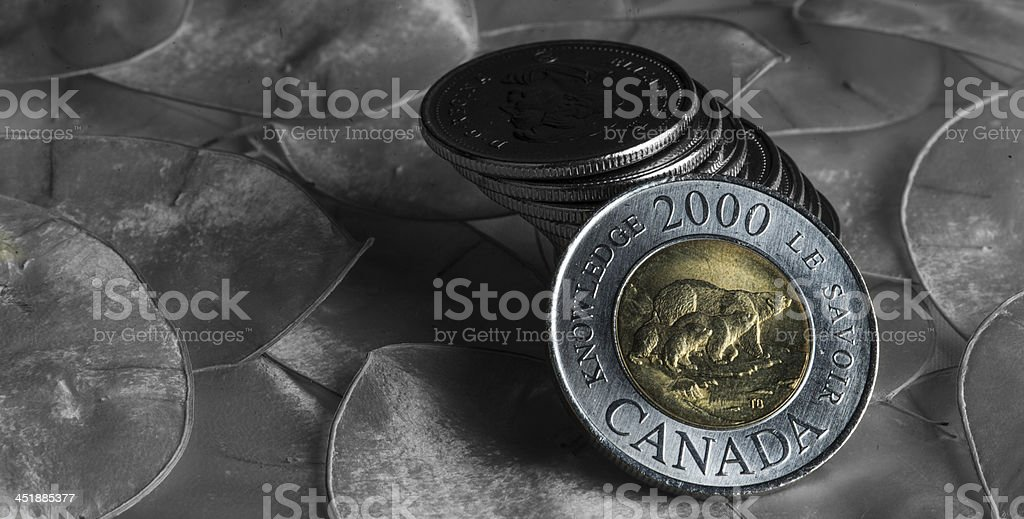 Canadian two doller coin stock photo