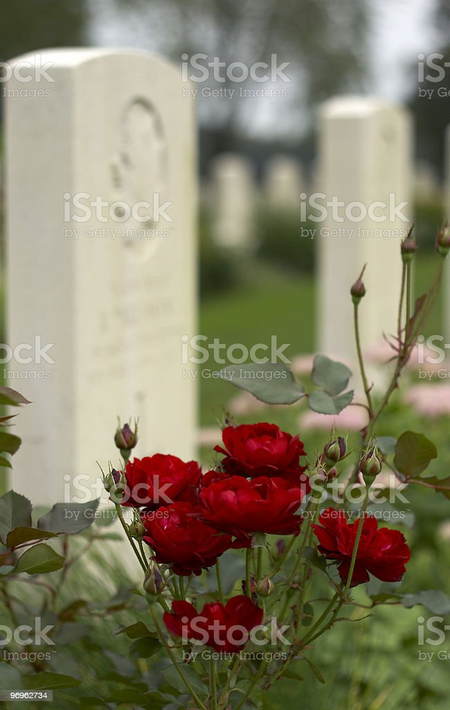 Canadian War Cemetery royalty-free stock photo