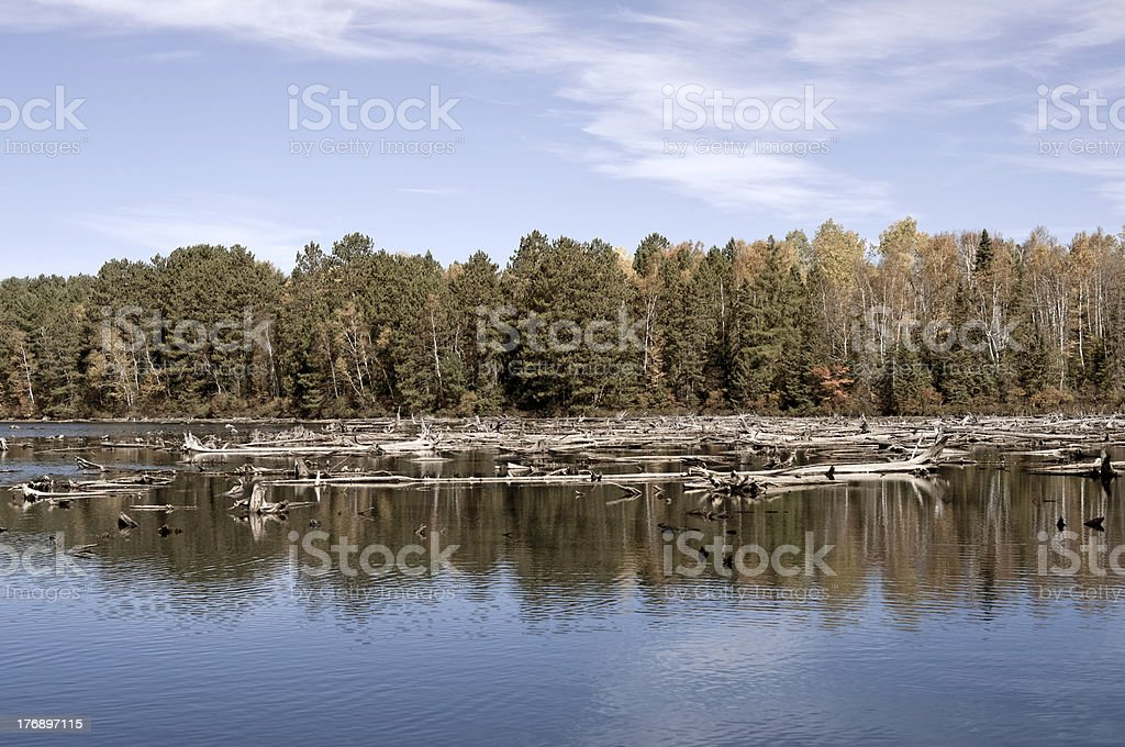 'Canadian Wilderness, Algonquin Lake' stock photo