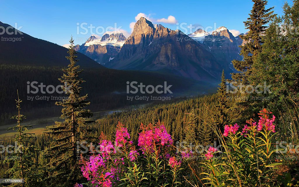 Canadian wilderness at sunset in Alberta, Canada royalty-free stock photo
