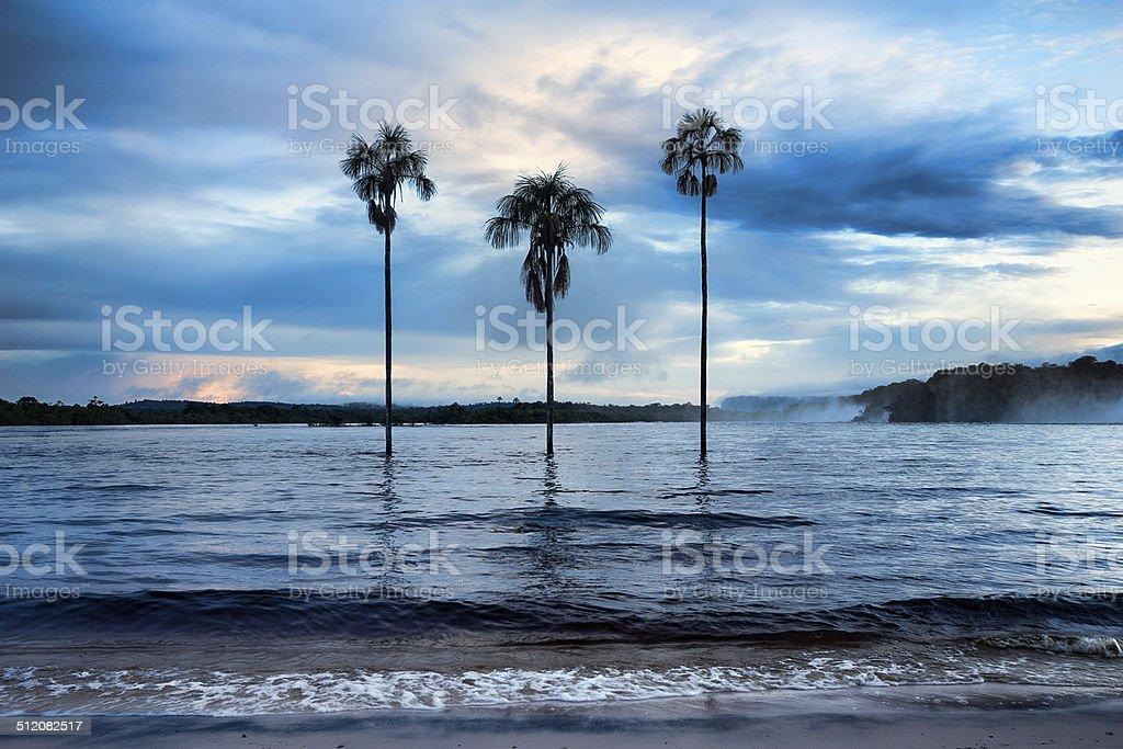Canaima Lagoon with three palm trees. Canaima NP, Venezuela stock photo