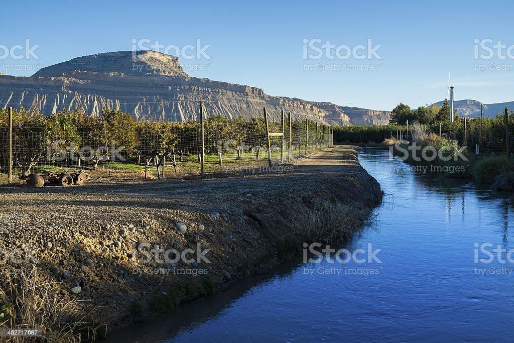 Canal and Vineyards Palisade Colorado stock photo