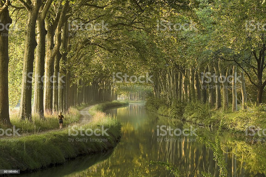Canal du Midi in the morning stock photo